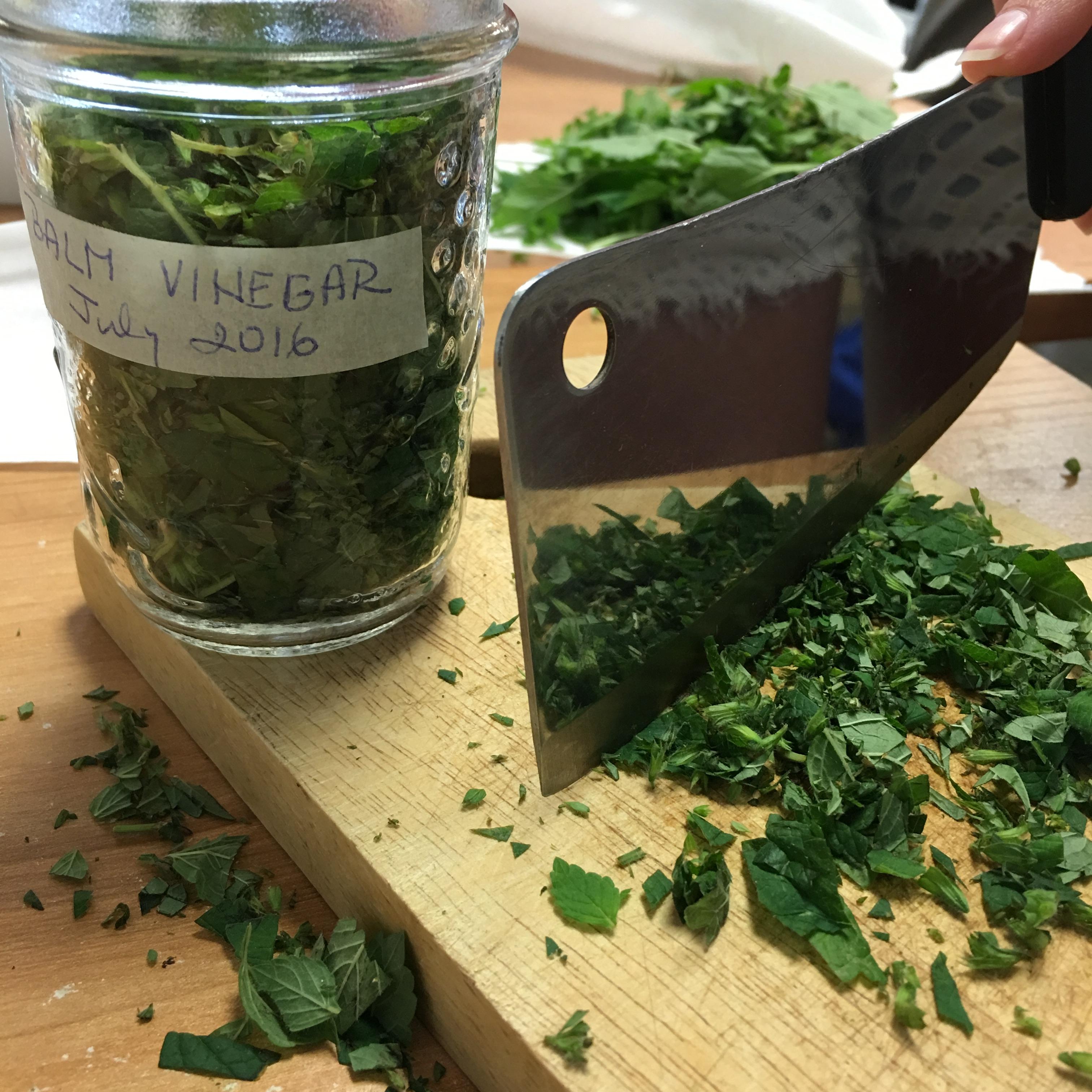 medicinal plant, herbal medicine