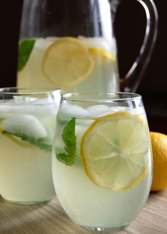 medicinal plants, herbal medicine lemon balm tea